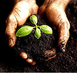 Soil_Conservation_in_India